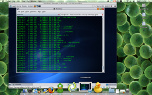 OpenSolaris guest running on OS X host.